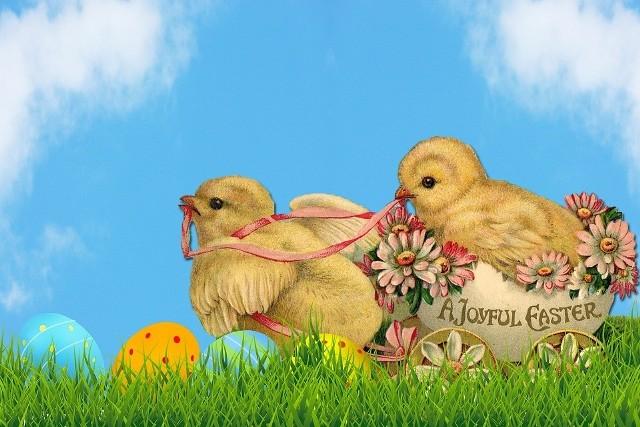 życzenia Wielkanocne 2019 Krótkie I śmieszne Wierszyki I