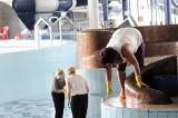 Trwa wielkie czyszczenie basenu (wideo, zdjęcia)