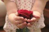 Najpiękniejsze życzenia na Dzień Babci i Dziadka - połączone. Wybierz wuerszyk dla dziadków i umieść go na laurce 18.01.20