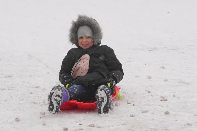 W ostatnich dniach pogoda rozpieszcza miłośników białego szaleństwa. W Poznaniu spadło sporo śniegu, a temperatura utrzymuje się poniżej zera. To idealne warunki dla amatorów jazdy na sankach. W sobotę 16 stycznia tłumy poznaniaków pojawiły się ze swoimi dziećmi na Wichrowym Wzgórzu by korzystać z ostatniego weekendu ferii. Zobacz wyjątkowe zdjęcia naszego fotoreportera.Następne zdjęcie---------->