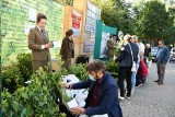Akcja SadziMy Las w Radomiu. Leśnicy rozdawali drzewka. Było wielkie zainteresowanie mieszkańców