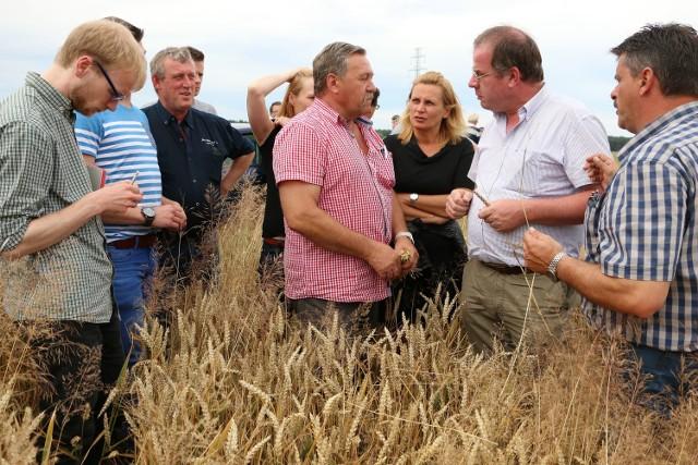 Właściciel gospodarstwa zawiózł gości m.in. na pole pszenicy.