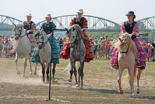 Dzień Konia - impreza pod tym hasłem w niedzielę odbędzie się w Płużnicy