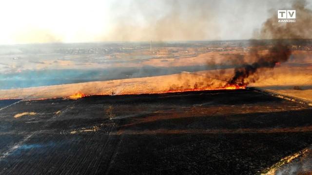 Pożar gasiło ok. 100 strażaków. Spaleniu uległo ok. 150 ha nieużytków