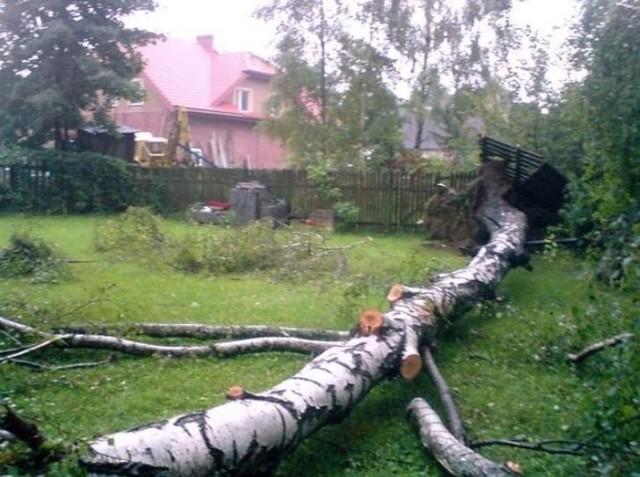 Wiatr wiejący w porywach do 90 km/h był przyczyną wielu awarii w województwie podlaskim. Z powodu zerwanych linii elektroenergetycznych w niedzielę bez prądu zostało około 11 tysięcy rodzin.
