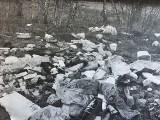 Sterta śmieci na polach pod Tarnowem. Ich właściciel wpadł, bo w odpadach zostawił zdjęcie rentgenowskie z danymi osobowymi