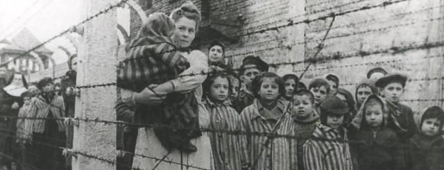 Ogółem do Auschwitz deportowanych zostało co najmniej 232 tys. dzieci, z których ok. 216 tys. stanowili Żydzi, 11 tys. Romowie, ok. 3 tys. Polacy, ponad 1 tys. Białorusini oraz kilkuset Rosjan, Ukraińców i innych narodowości
