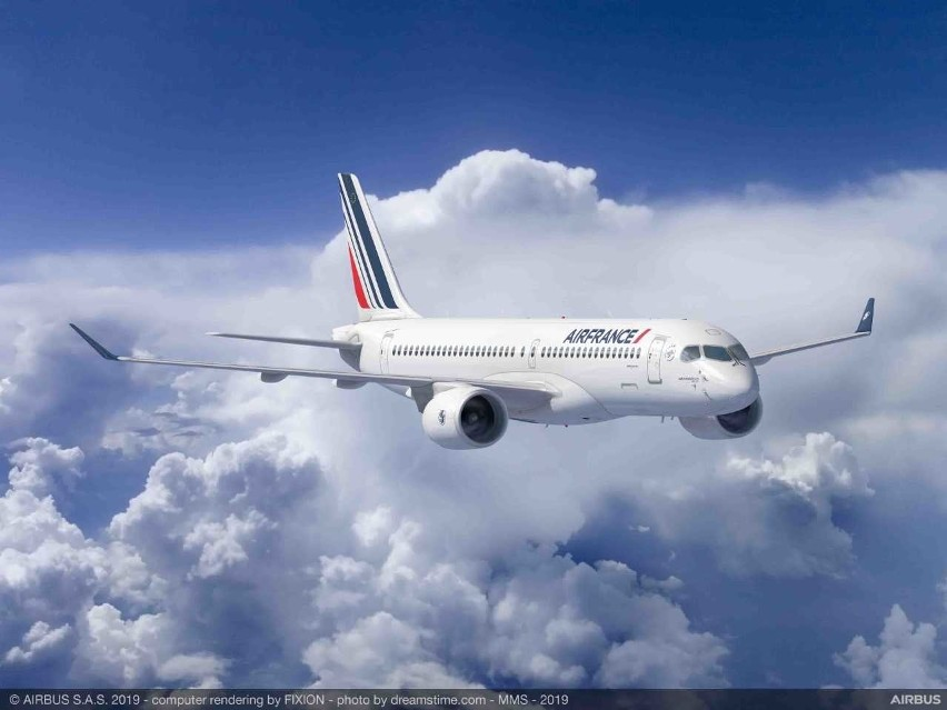 Horror na lotnisku w Paryżu. W podwoziu samolotu znaleziono zwłoki 10-latka