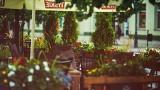 Białostockie restauracje przygotowują się do ponownego otwarcia. Nie wszystkie jednak przetrwały kryzys (ZDJĘCIA)