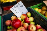 Cena jabłek i gruszek 2021. Owoców do lata nie zabraknie? Sytuacja na rynku owoców stabilna