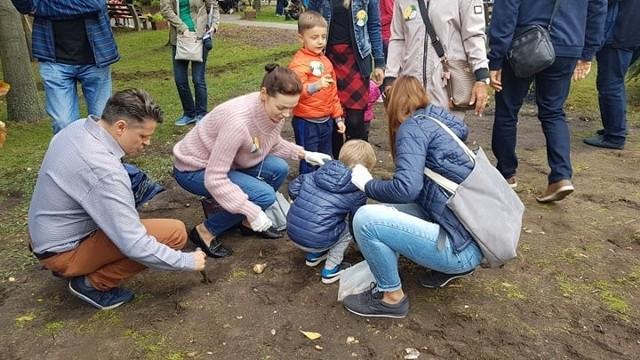 Pola Nadziei - sadzenie cebulek żonkili przed Domem Kombatanta - Zielona Góra - 28 września 2019