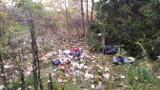 Śmieciowy problem przy ul. Topolowej w Koszalinie [ZDJĘCIA]