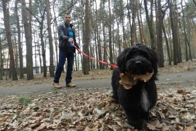 - Pies ma chodzić przy nodze, a nie latać bez kontroli - uważa pan Dariusz, właściciel suczki Nelly.