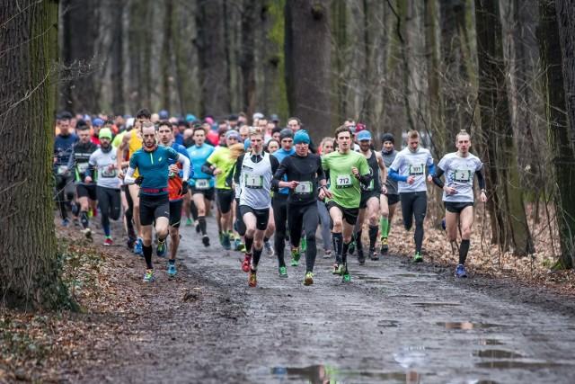 Ostatni bieg City Trail w Lesie Osobowickim