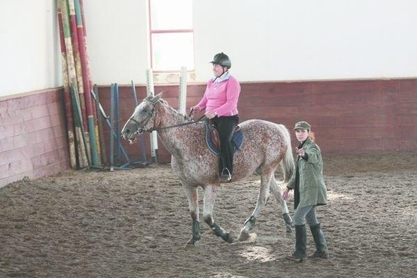 Uczestnicy warsztatów podzieleni są na dwie grupy jeździeckie: początkującą i zaawansowaną. Tak, aby każdy mógł rozwinąć swoje umiejętności.