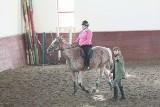 """Warsztaty """"Koń w agroturystyce"""". Polacy i Litwini wspólnie uczą się rozumieć konie (zdjęcia)"""