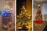 Choinki Internautów z Rzeszowa i nie tylko! Zobacz piękne zdjęcia bożonarodzeniowych drzewek