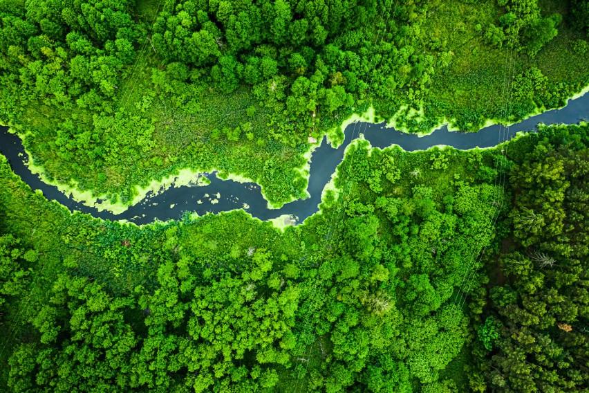 Największe przyrodnicze atrakcje Polski. Te perełki musisz zobaczyć choć raz w życiu! TOP 10 miejsc na wakacje