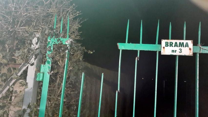 Masakra na ogródkach działkowych w Stargardzie. Mężczyzna nadział się ręką na wylot na metalowy pręt ogrodzenia. Uwaga, drastyczne zdjęcie