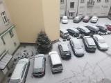 Dziś w Łodzi cały dzień będzie padał śnieg. Zgłoś gdzie jest ślisko i niebezpiecznie