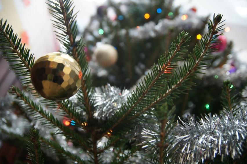 Sprzedaż ozdób świątecznych pomoże pani Cecylii wrócić do własnego domu