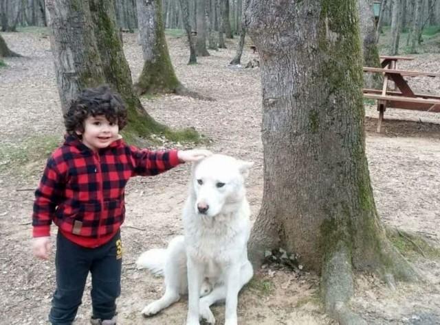 Çağan Alp Önder urodził się 21 sierpnia 2013 roku. Oznacza to, że w czasie kręcenia miał 5 lat, a obecnie ma już prawie 8! Chłopiec ma konto na Instagramie - prowadzone przez rodzinę - na którym publikuje swoje prywatne zdjęcia, dzięki czemu możemy zobaczyć, jak dziś wygląda.