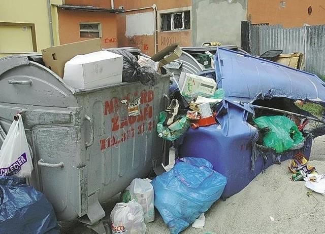 Tak od wielu miesięcy wygląda podwórko w centrum Żagania. Śmieci wysypują się ze wszystkich 21 kubłów, a smród w upalne dni jest nie do opisania.