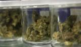 Problem z medyczną marihuaną. Lek zniknął z aptek na Pomorzu