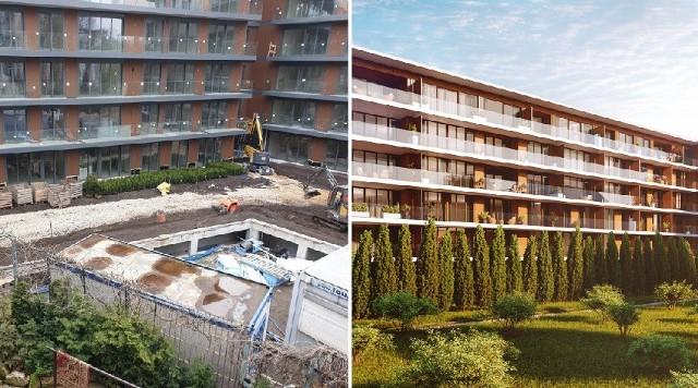 Mieszkańcy upominają się o drzewa, które miały zostać nasadzone przy apartamentowcu budowanym przy ul. Stradomskiej.