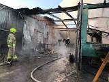 Pożar zakładu w Świerznie. W pobliżu stały duże zbiorniki z paliwem (ZDJĘCIA)