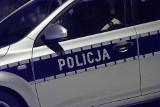 20-letni włamywacz z gminy Zamość zatrzymany. Na jego trop wpadł policyjny pies