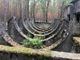 Jakie tajemnice skrywają lasy w okolicy Nowogrodu Bobrzańskiego? Zobacz zdjęcia!
