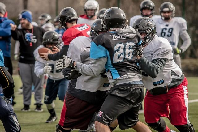 Zimowe treningi przyniosły pożądany efekt - na starcie sezonu Panthers Wrocław są nie do powstrzymania