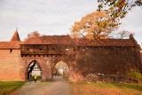 """""""Trasa zielona"""" przy malborskim zamku wciąż czynna! Można podziwiać zamkową faunę i florę"""