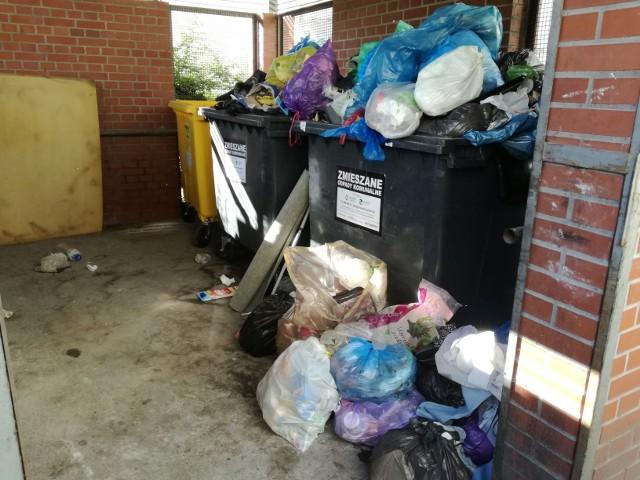 Wrocław: Przepełnione pojemniki na śmieci w Śródmieściu