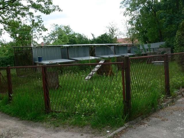 Na działce przy ulicy Jachowicza znajdują się kojce policyjnych psów i tor do tresury. W niedługim czasie zostaną przeniesione a działka sprzedana.