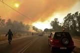 Zabójcze pożary atakują Europę: płoną Patras i Rodos w Grecji, Pescara we Włoszech, Antalya w Turcji. Przybywa śmiertelnych ofiar [WIDEO]