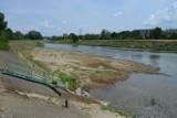 Bardzo niski stan Wisłoka w Rzeszowie - woda sięga do 50 cm. Zobacz, co wyłania się z rzeki [ZDJĘCIA]