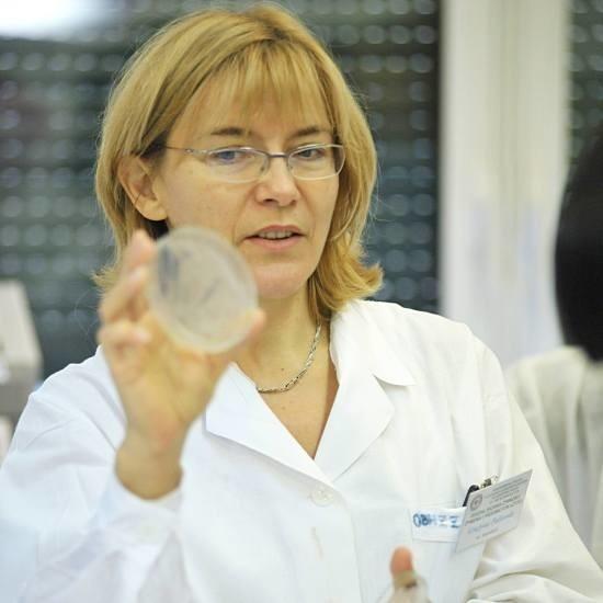 Dzien otwarty sanepidu23 paLdziernika 2008 roku w gorzowskim sanepidzie byl dzien otwarty. Od środka prace laboratoriów zobaczyla pierwsza klasa technikum budowlanego.