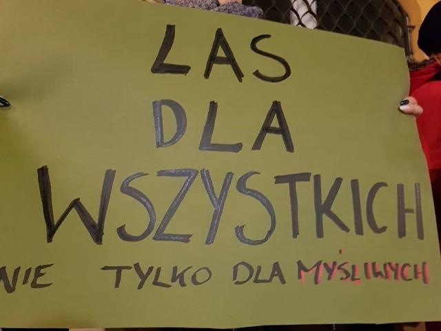W Polsce protesty przeciwko zawałaszczaniu lasów przez myśliwych trwają od kilku lat...
