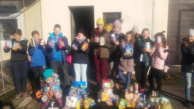 Uczniowie zebrali ponad pięćdziesiąt kilogramów karmy, puszek i przysmaków dla mieszkańców przytuliska.