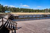 POLREGIO uruchamia od 1 lipca codzienne połączenia kolejowe do stacji Siemianówka. Będzie także autobus dowożący na plażę w Rudni