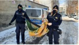 Strażnicy miejscy uratowali łabędzia, który przymarzł nad Nacyną w Rybniku