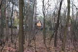 Zabudują las kochłowicki? Mieszkańcy zaniepokojeni ilością domków letniskowych i prywatnych
