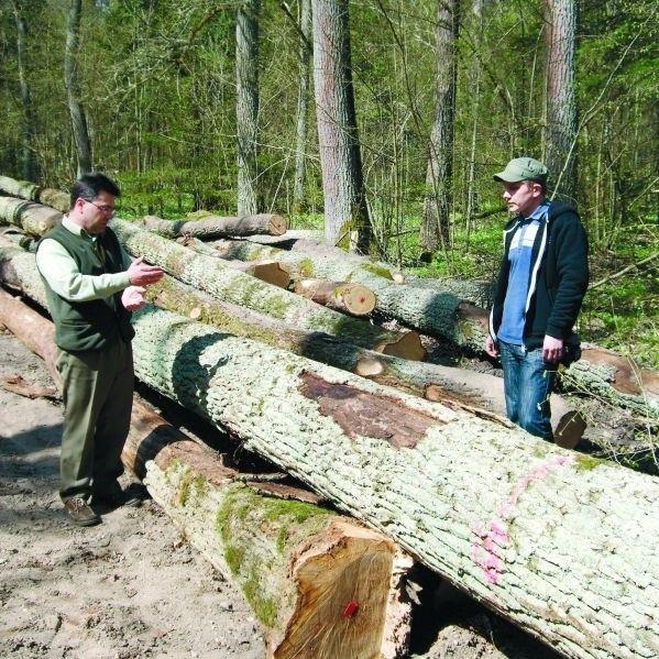 Wycinka dębów w puszczy poróżniła leśników i ekologów (po prawej Adam Bohdan z Pracowni na rzecz Wszelkich Istot)