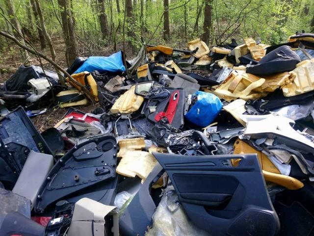 W rejonie ulicy Chojnickiej w Poznaniu nieznani sprawcy wyrzucili w lesie całe mnóstwo worków, w których znajdowały się części z demontażu samochodów. W lasach można znaleźć wiele takich dzikich wysypisk śmieci. Ludzie wyrzucają stare meble, zalegający w domach i garażach niepotrzebny sprzęt