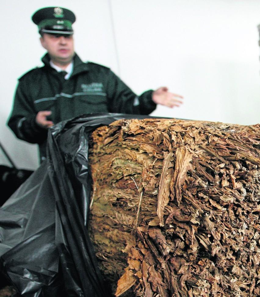 Nielegalne fabryki tytoniu na Pomorzu rozwijają działalność
