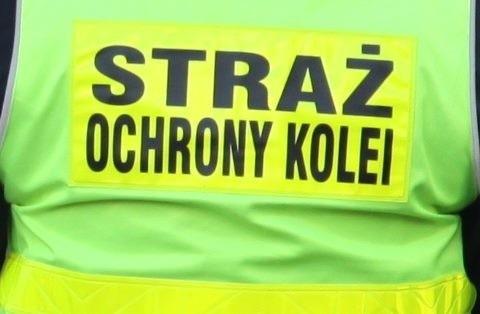 Na dziwnie zachowującego się chłopaka zwrócili uwagę funkcjonariusz SOK-u patrolując pociąg relacji Opole Główne - Wrocław Główny.