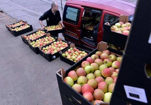 Caritas Archidiecezji Wrocławskiej też przekazywał ubogim  jabłka od polskich sadowników – 10 kg na jedną osobę