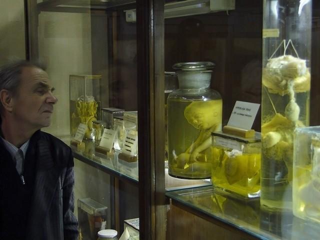 W przyziemiu gmachu przy ul. Święcickiego znajduje się m.in. muzeum, które... nigdy nie zostanie otwarte. Miejsce niedostępne do zwiedzania dla zwykłych poznaniaków. Przejdź dalej i sprawdź, co kryje się w jego wnętrzach --->